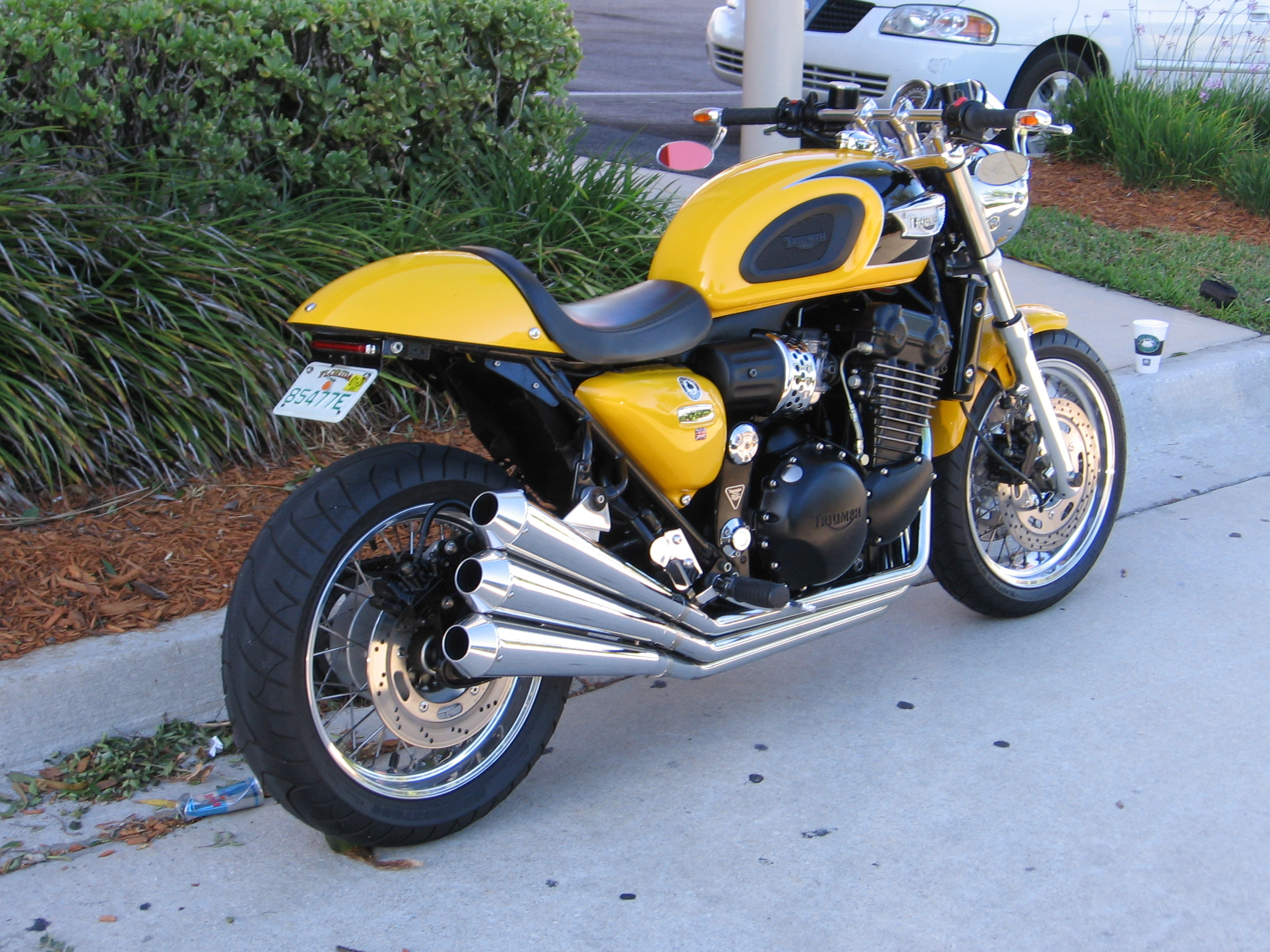 By Buddies Old Triumph Thuderbird Sport Motorcycle Photo Of