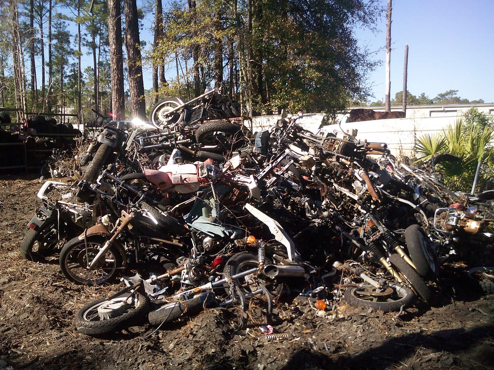 Used harley motorcycle parts harley salvage parts used for Yamaha salvage yards